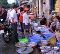 Vũng Tàu: Vựa hải sản và chợ hải sản tự chọn tươi ngon.