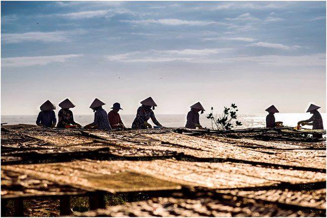 Hình ảnh Du lịch làng chài Phước Hải 7