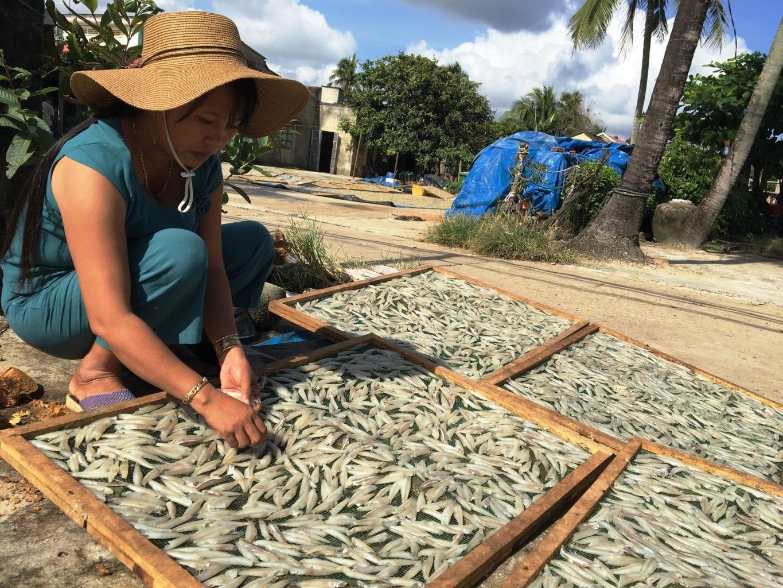 Hình ảnh Khám phá khu chợ Bến Đình Vũng Tàu đầy ắp hải sản 6
