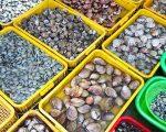 Hình ảnh Chợ Xóm Lưới Vũng Tàu - Chợ hải sản giá rẻ 13